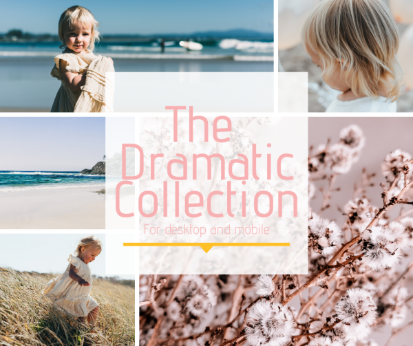Dramatic Lightroom Presets Emily K Creative